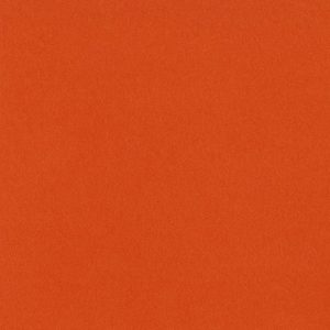 309041_3-381_Bazzill Orange